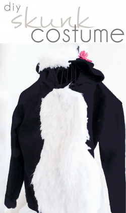 DIY Skunk Costume, DIY Adult Costume, DIY Kids Costume - Pocketful of Posies